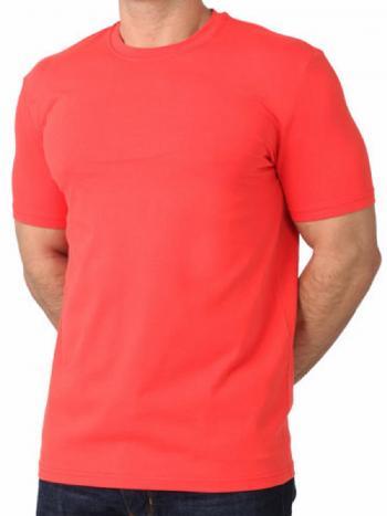Футболка Clever 600309гФутболка Clever 600309г. Мужская футболка с коротким рукавом из однотонного натурального хлопка, что обеспечит Вам комфортную и удобную носку. На рукаве фирменный принт-надпись.<br>